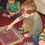 Touch Tank Visit!