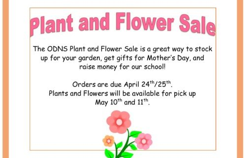 plant and flower sale